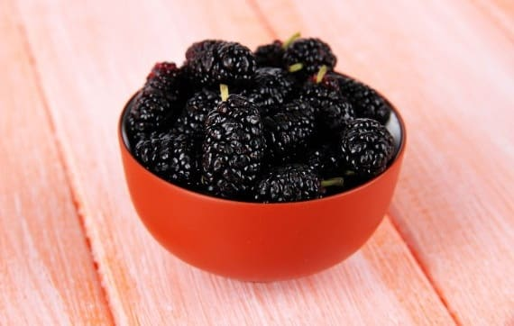 Dâu đen rất giàu chất chống oxy hóa, vitamin C, vi lượng sắt, canxi và vitamin A