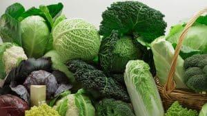 Ba loại rau cải quen thuộc được xem là vị thuốc tự nhiên